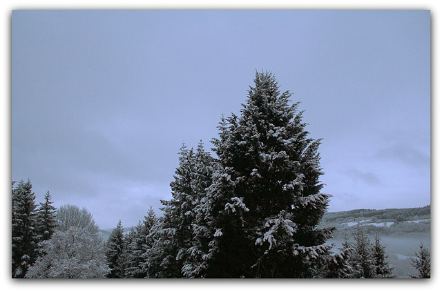 petit matin glacial