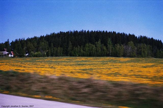Road To Lipno, Sumavsky Narodni Pamatka, Bohemia(CZ), 2007