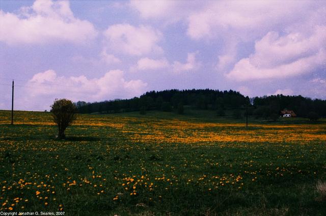 Austria Hike, Picture 6, Schoneberg, Austria (or possibly Sumava), 2007