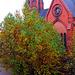 Herbstbaum mit Kirche
