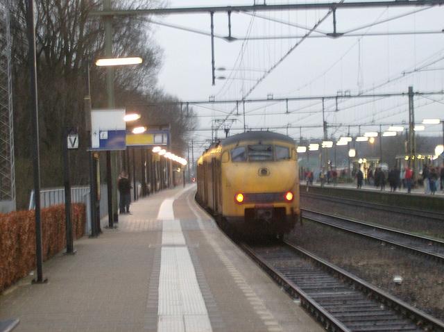 La haltotrajno al Zutphen