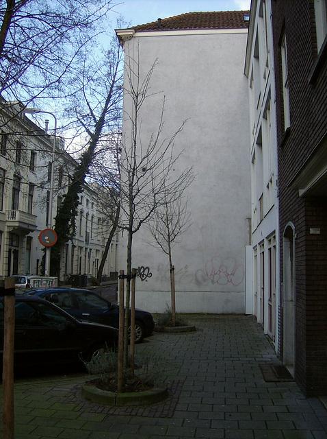 Muro de domo