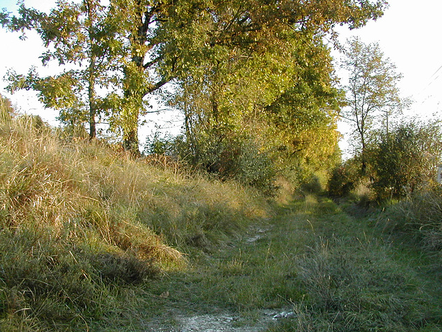Chemin vert du Quercy blanc