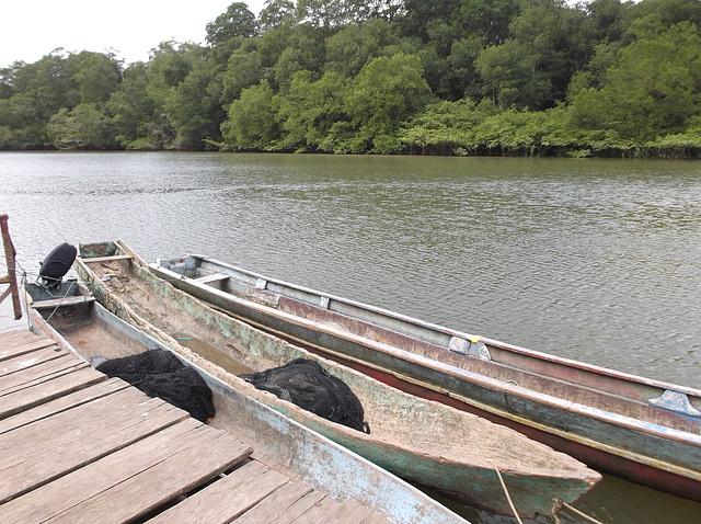 Pirogues Wounaan  / Wounaan  canoes