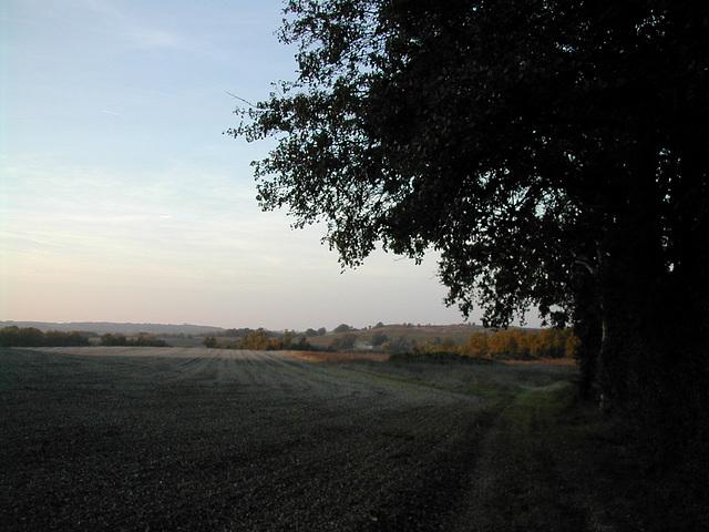 Quercy Blanc blanc