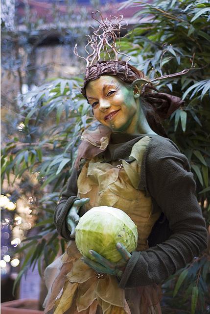 Cabbage elfin