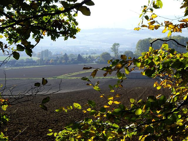 Blick vom Waldsaum auf die Bückeberge