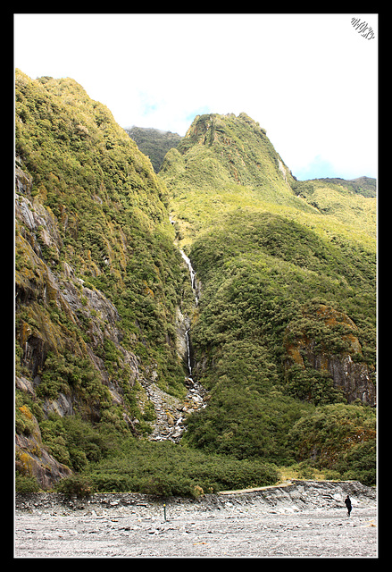 Waiho River valley