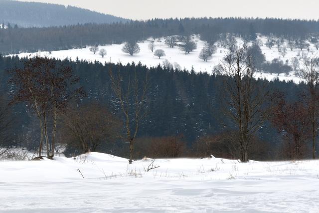 Hochrhön - 130323