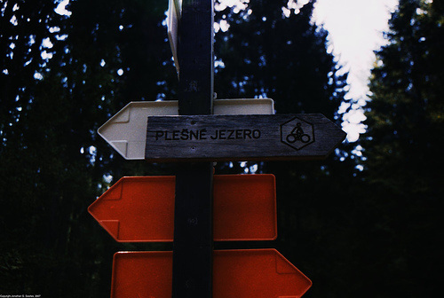 Plesne Jezero Sign, Sumavsky Narodni Pamatka, Bohemia(CZ), 2007