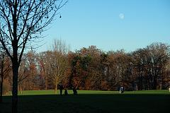 Golf course near Wolfratshausen