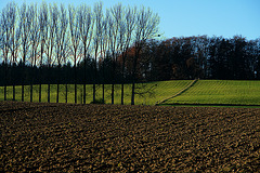 Near Wolfratshausen
