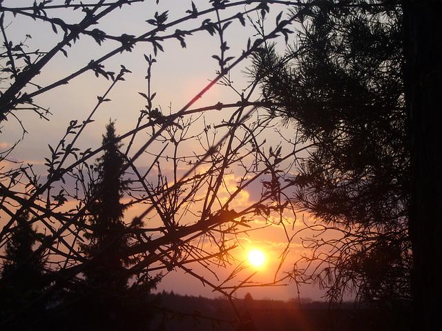 sunset 2009-04-03