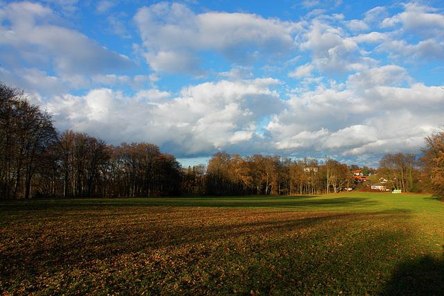 Assenhausen
