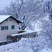 Winter in Icking II