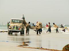 Emirates Fishermen
