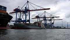 Cranes, Hamburg Altenwerder