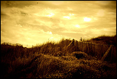 Dunes, Belle-Ile-en-Mer  The Remix (#2)
