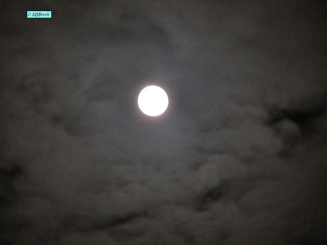 01 moon