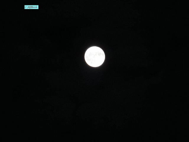 02 moon