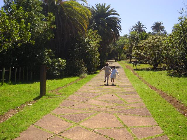 Correteando por el parque