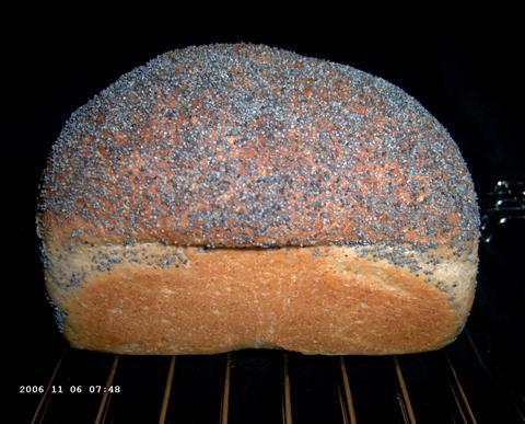 Struan Bread van webblog Rose