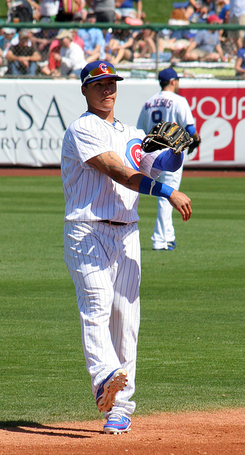 Chicago Cubs Player (9993)