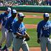 Kansas City Royals (9815)