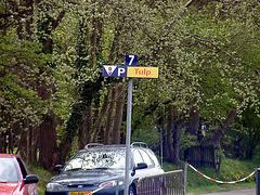 Tulp-Parking