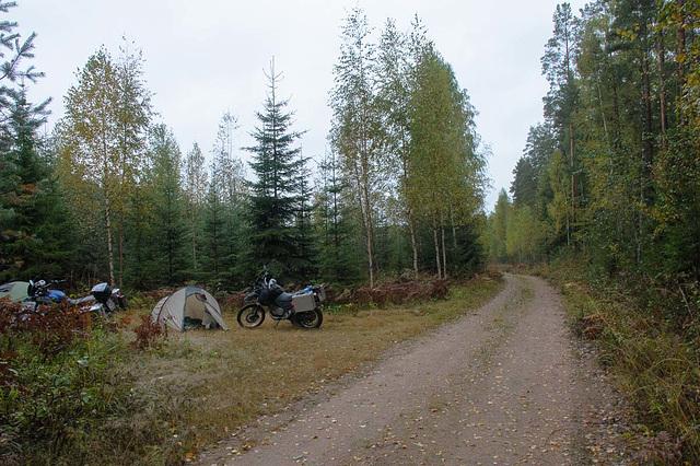 Im Wald in Finnland ist übrigens _ERLAUBT_!