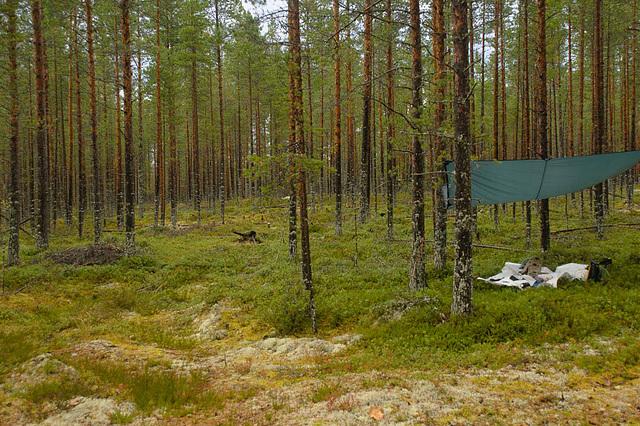 Camp im Wald