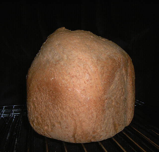 Sourdough French Bread 1