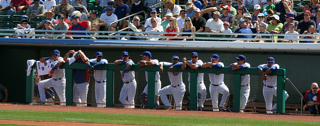 Chicago Cubs (0005)