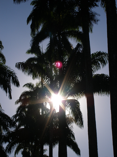 Rio Sun - June 2006
