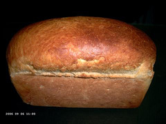 Thirty-minute White Bread