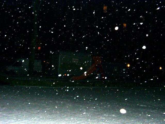 Day #024: Snow!