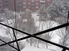 Real snow!