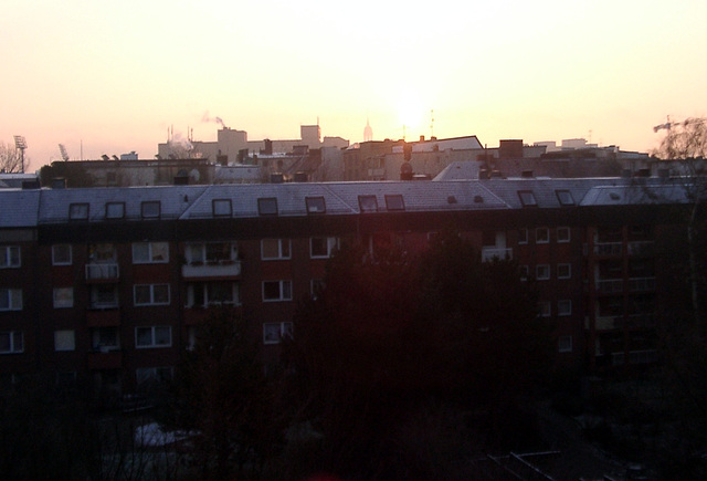 Morningsun in winter