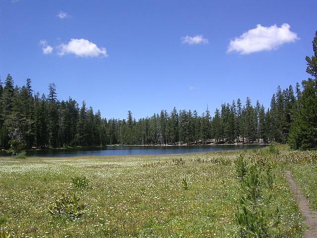 endlich in Sicht - Lukens Lake