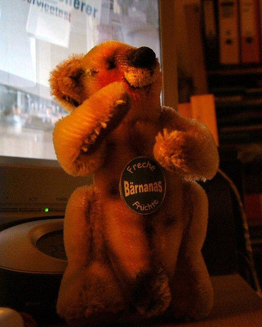biiiiig bear!