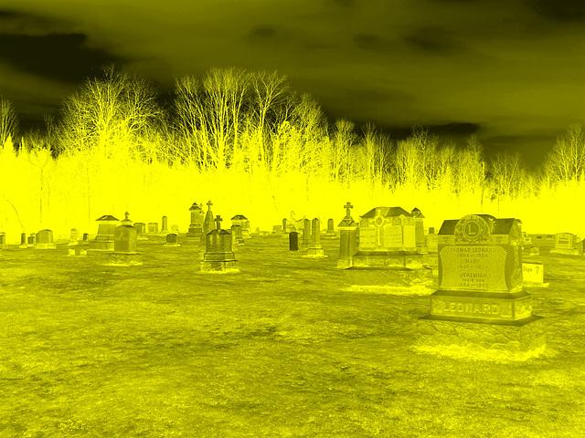 Immaculate heart of Mary cemetery - Churubusco. NY. USA.  March  29th 2009- Négatif colorisé en jaune