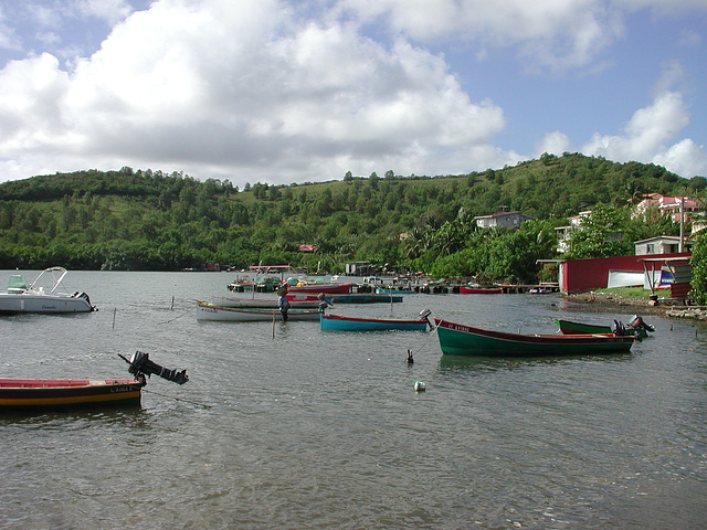 martinique (144)