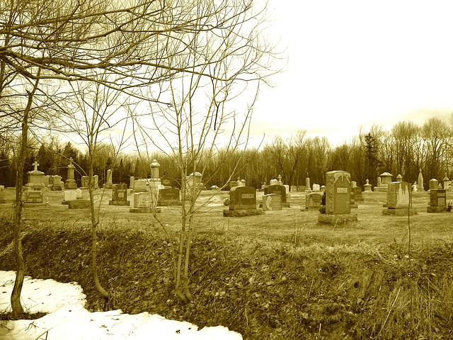Immaculate heart of Mary cemetery - Churubusco. NY. USA.  March  29th 2009 - Sepia
