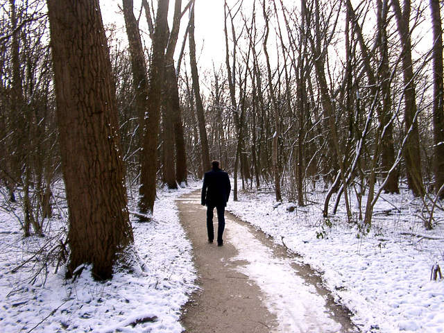 Forest-walker