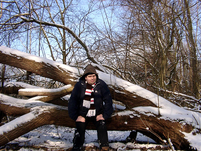 Sitting on dead wood