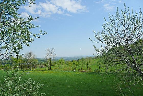 Sehnsucht nach Licht - Weite - Frühling - sopiro al lumo - malproksimo - printempo