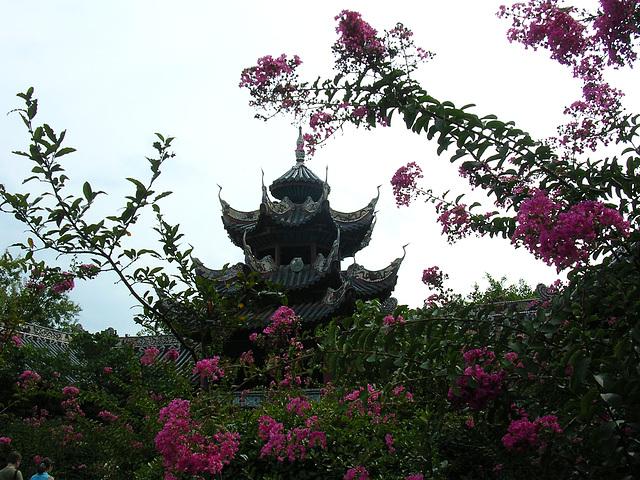 Tempel und Blüten