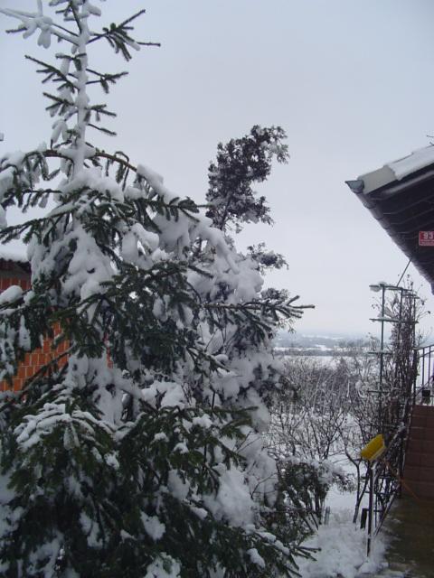 Zima, Zima bela - Vintro, Vintro blanka