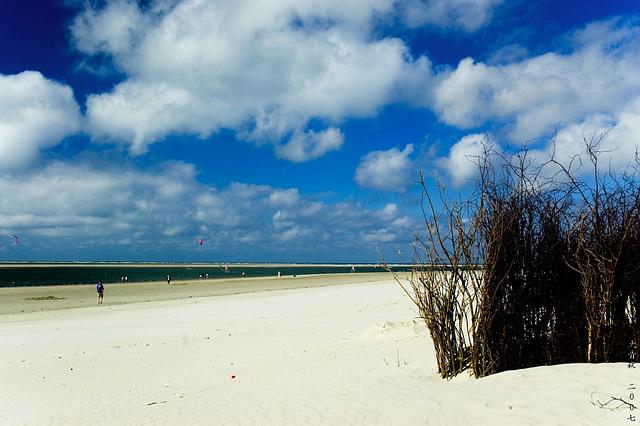 Langeoog Strand 2