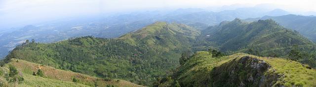 panoramique millenium 2